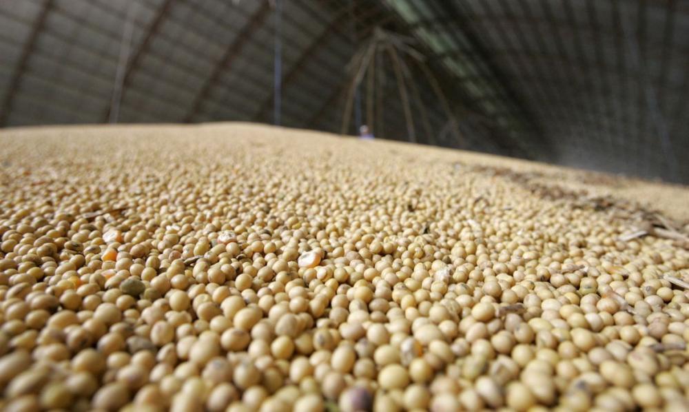 A safra de cereais deve fechar 2020 em 247 milhões de toneladas
