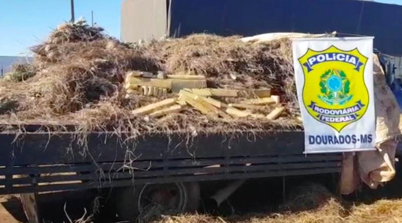 Esta é a segunda apreensão neste mês de droga escondida em carga de abacaxi