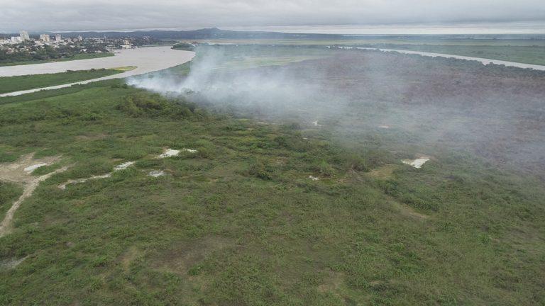 Incêndios já consumiram quase dois mil hectares na região do pantanal de MS