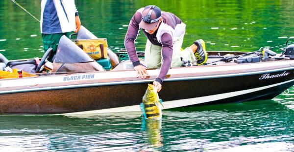 Pescadores de 12 estados apoiam cota zero em MS