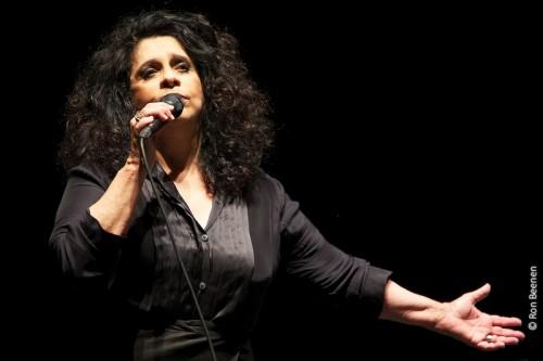 Festival de Inverno de Bonito terá shows com Gal Costa, Lenine e Chrystian e Ralf