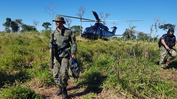 Operação destrói maconha avaliada em mais de R$ 150 milhões