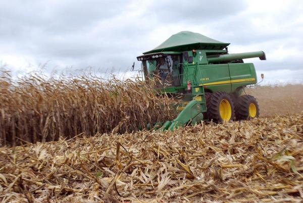Cereais, leguminosas e oleaginosas podem ter safra recorde