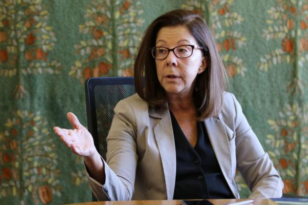 Itaipu: embaixadora acredita em entendimento entre Brasil e Paraguai