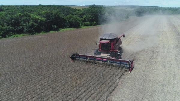 Embrapa destaca aumento do plantio de soja em município de MS