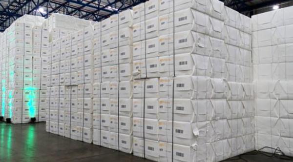 Celulose garante saldo US$ 537 milhões na balança comercial de MS